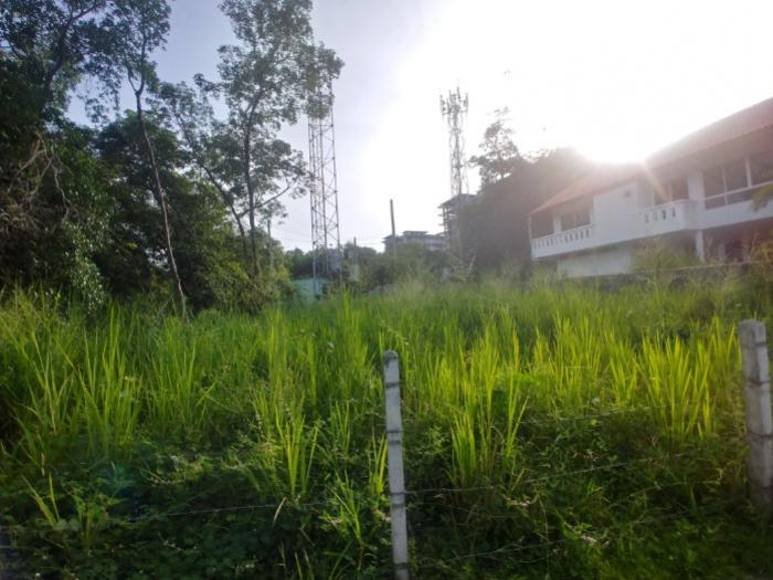 Land for sale in Rawai-20181213_162646_HDR.jpg