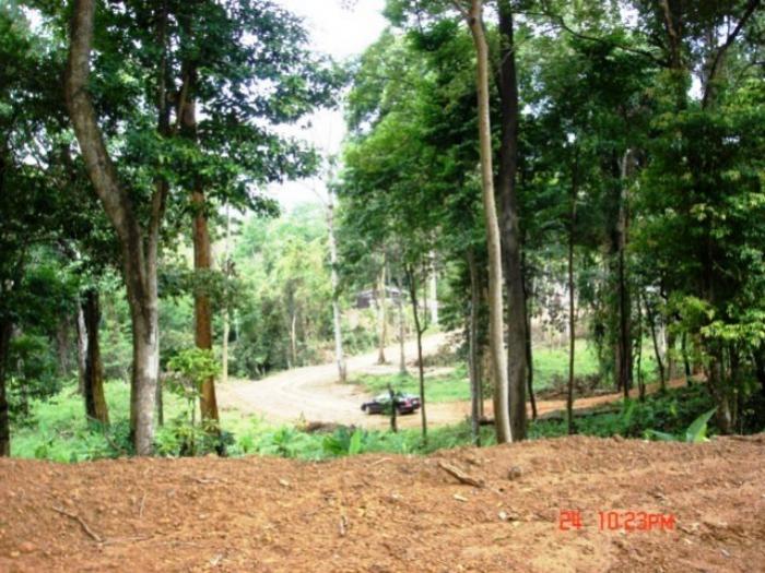 Land 31 Rai with Panoramic View-240307d.jpg