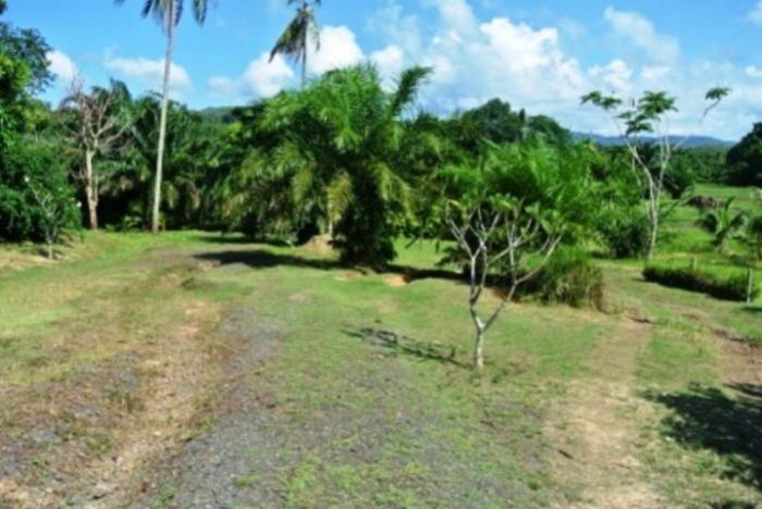 Land with Lake View.-DSC_1151.jpeg
